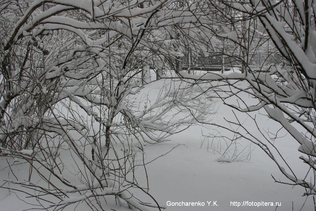 Снежные кружева - 1
