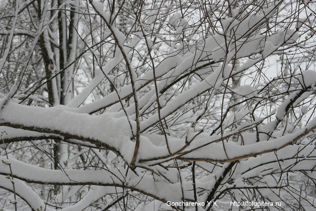 Снежные кружева - 2