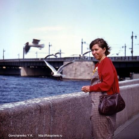 Чайки у Литейного моста