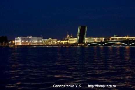 Троицкий мост. Вид с Петровской набережной