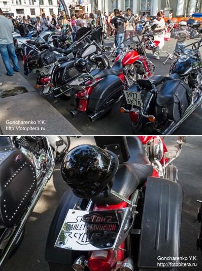 Harley_28