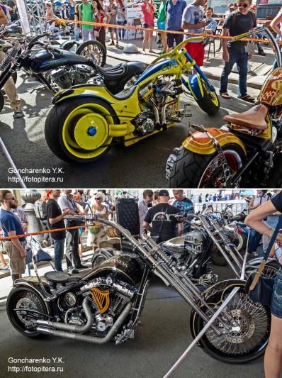 Harley_36